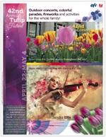 Image des tulipes certifiée «Perfect Pass» par VIGC