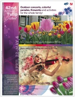 Imagen de Tulip VIGC Perfect Pass